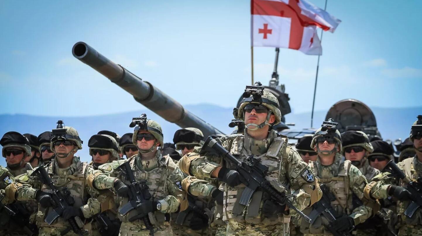 Georgia's Army