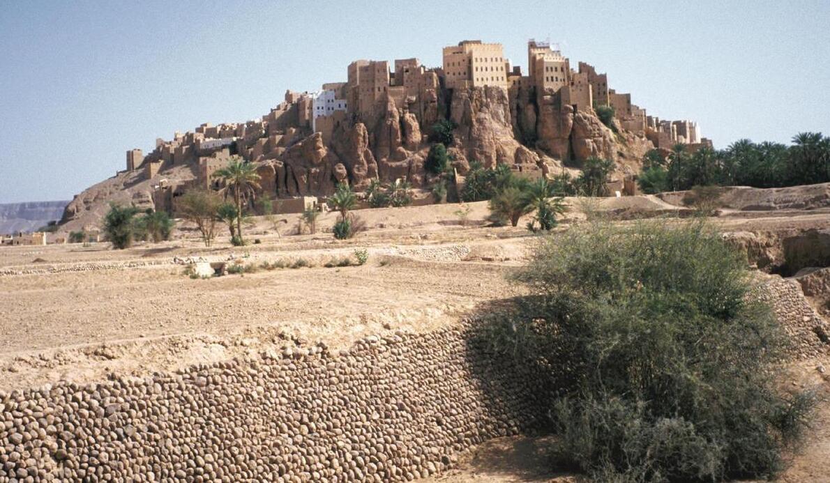 The city of Tarim