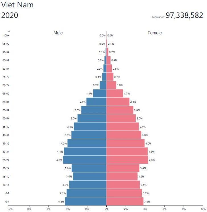 Vietnam Population Pyramid