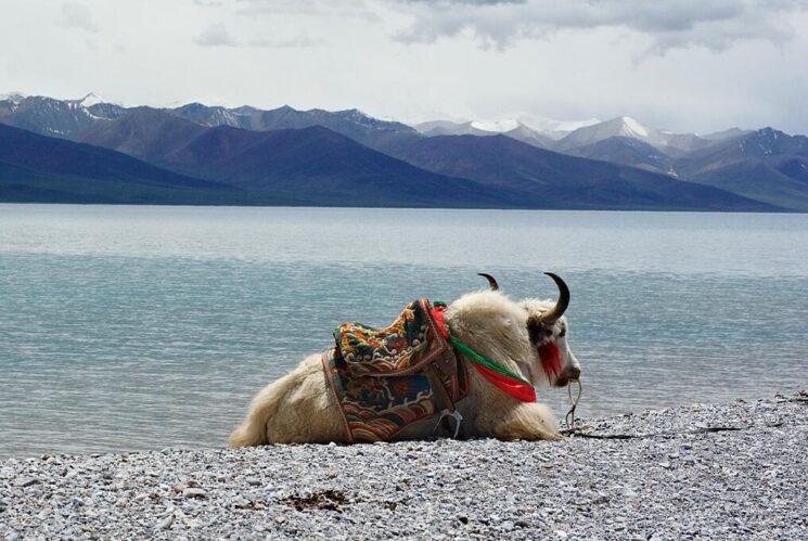 Nam Co Lake in Tibet China