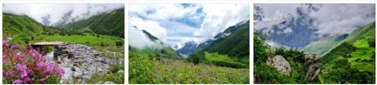 National Parks in Uttarakhand